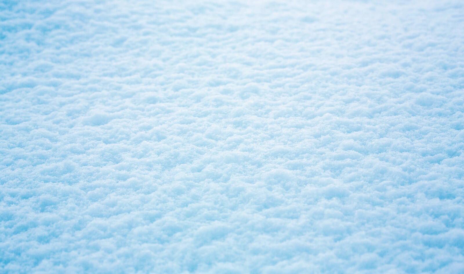 初冠雪 雪 snow