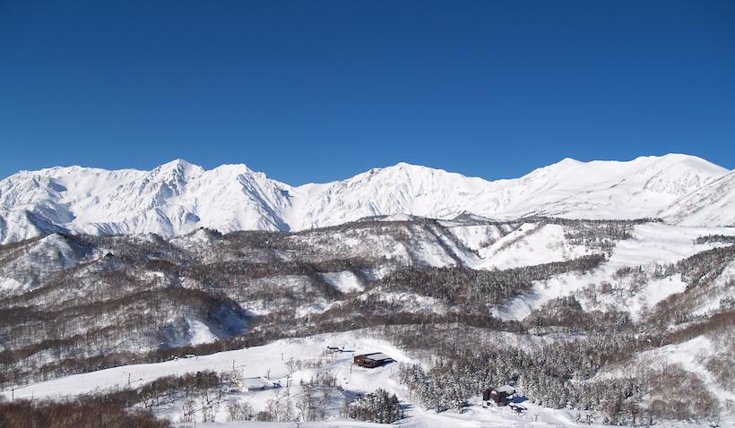 栂池高原スキー場 ブライアン・イグチ